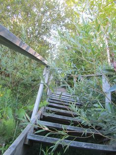 Beach Stairs 3