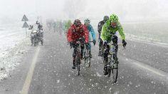 Cycling (Milan-San Remo 2013)