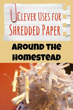 There are so many eco-friendly uses for shredded paper, I've decided that it should be considered an asset, rather than a liability on the homestead.