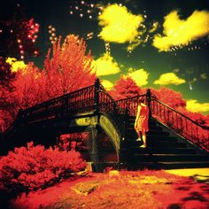Lucy in the Sky with Diamonds — mylatehope · Lomography