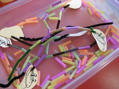ramblings of a preschool teacher, S, pipe cleaner, straw snakes