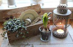 Vintage Fensterbank Deko - Hyazinth, Kerzenlaterne und Holzkasten