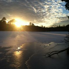 "Instagram photo by @aamywilson. ""Frozen Lake Fred'"