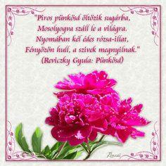 Kinszi Böngészde: Képeim - Pünkösd Pentecost, Easter Activities