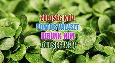 Tavaszi zöldségek kvíze, immunerősítő a megoldás! Parsley, Spinach, Herbs, Vegetables, Herb, Veggie Food, Vegetable Recipes, Veggies, Spice