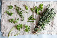Cum să păstrezi ierburile aromatice proaspete. Trucul cu ulei de măsline | Feel Like Cooking