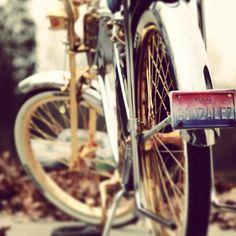 Show bike custom schwin