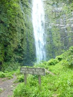 Waimoku Falls, Pipiwai Trail. Awesome Hike past Oheo Gulch (7 sacred pools) You wind through a bamboo forrest and an old banyon tree along the way. About 40 minutes. A little tough for those not comfortable walking uphill. Wooden and Dirt paths. Incredible! If you can handle the drive just past Hana it's not to be missed.