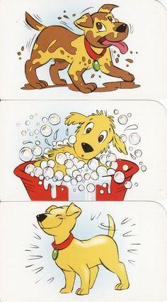Dog gets a bath sequence