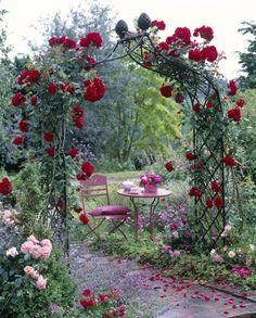 Bildresultat för ros vid entren