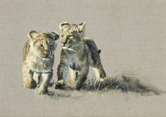 Lion Cubs by Karen Laurence-Rowe Wildlife Paintings, Wildlife Art, Animal Paintings, Horse Drawings, Animal Drawings, Tiger Art, Lion Art, Celebrity Drawings, Puppies