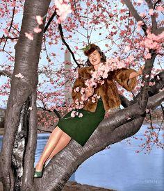 Vintage spring fashion, cherry blossoms.