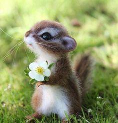 Cute Wild Animals, Baby Animals Super Cute, Baby Animals Pictures, Cute Stuffed Animals, Cute Little Animals, Cute Animal Pictures, Cute Funny Animals, Animals Beautiful, Cute Cats