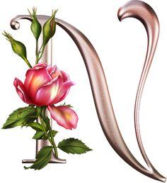 Alfabeto plateado con flores rosas   Fondos de pantalla y mucho más