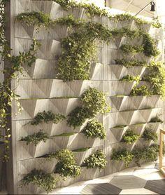 IL CANTIERE SRL - VERTICAL GREEN Gigi Rossi Parete modulare per interno ed esterno.  Dimensione moduli: 150 cm x 25 cm  Altezza massima: 250 cm