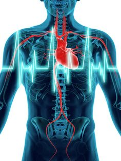 An angiography is a very effective diagnostic procedure that literally takes x-ray pictures of the #heart chambers and blood vessels. PlacidWay is the leading online destination to find cheap and the best cardiac #angiography treatment center, clinics, and hospitals in India.  So contact PlacidWay at +1.303.500.3821 to know more information of the top coronary #angiographyprocedure in India. Don't forget to ask for a FREE quote!