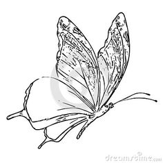 Illustration about Butterfly Adult Children Coloring Book Black White Sketch Cartoon Children Anti-stress Relaxing Coloring. Illustration of children, white, antistress - 133218960 Adult Coloring, Coloring Books, Anti Stress, Adult Children, Sketch, Butterfly, Cartoon, Black And White, Illustration