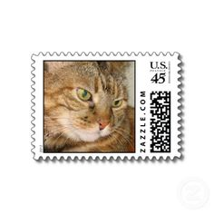 Cat postage stamps.  #cat #postage #photo