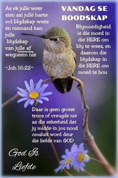 Afrikaans, God, Dios, Allah, The Lord