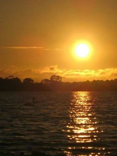Ireland sunset singing a swan song ~ Lakeside Killarney ~ County: Kerry Beyond The Horizon, Swan Song, Magic Hour, Leaving Home, Emerald Isle, Sky High, My Happy Place, Kilarney Ireland, Dream Vacations