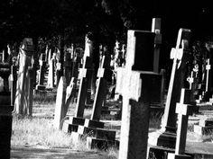 Crowded_Cemetery_by_Zmulaua_Stonoga.jpg 900×675 pixels