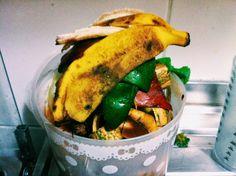 o que eu vou fazer com o lixo orgânico? | Um ano sem lixo