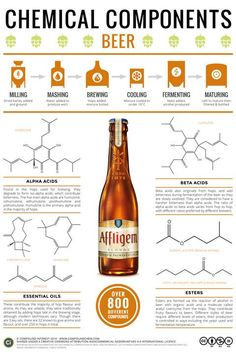 What Gives Beer Its Flavor?