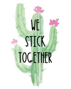 Image result for cactus classroom quote