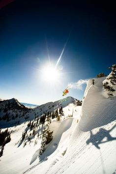 go big at Alta! photo: Lee Cohen.