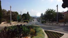 Haifa - Israel Haifa Israel, Plants, Plant, Planets