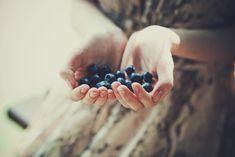 Blueberries by play-my-game.deviantart.com on @DeviantArt