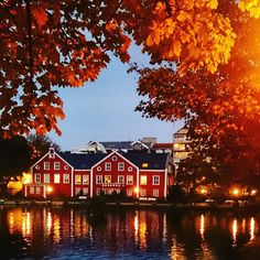 Cozy lake in Stavanger center Thanks to for taking this beautiful picture Tourist Sites, Visit Norway, Stavanger, Beautiful Pictures, Cozy, Autumn, Mansions, House Styles, Home Decor