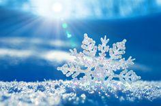 Copo de nieve en fondo azul, wallpaper.
