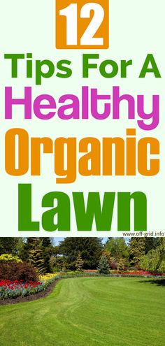 12 Tips For A Healthy Organic Lawn Container Vegetables, Container Gardening, Gardening Tips, Hobby Farms, Companion Planting, Off The Grid, Alternative Health, Lawn Care, Survival Tips