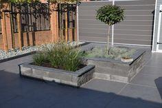 Back Garden Design, Back Gardens, Backyard Landscaping, New Homes, Exterior, Landscape, Plants, Gardening, Gardens