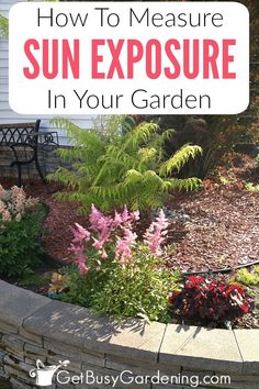 To determine the sun exposure in your garden, start early in the morning after the sun comes up. Then every hour, check the garden area again, and write down the sun exposure. Keep tracking it every hour until the sun goes down. Here are step-by-step instructions for how to measure sunlight in your garden.