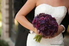 This is the color/flower i wanted for my wedding: Dark purple hydrangea bouquet Royal Purple Wedding, Plum Wedding, Purple Wedding Flowers, Bridal Flowers, Floral Wedding, Berry Wedding, Plum Flowers, Wedding Bells, Wedding Colors