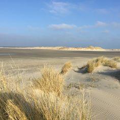 Green Beach. Isle of Terschelling.  The Netherlands