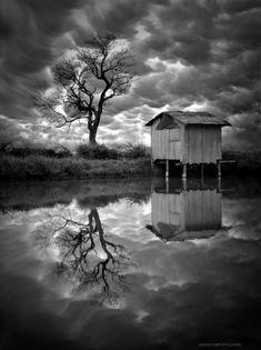 Magical Landscapes