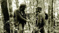 1957. Fidel Castro habla con el Che Guevara en la Sierra Maestra, casi un año después de la llegada del 'Granma' a Cuba. AFP (fuente)