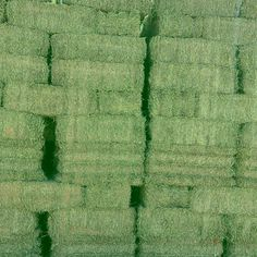 Hay For Sale In Arizona - HayMap Hay For Sale, Goat Care, Goats, Arizona, Goat