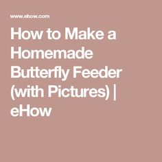 How to Make a Homemade Butterfly Feeder (with Pictures) Homemade Humidifier, Homemade Windmill, Citronella Torches, Citronella Candles, Soy Candles, Butterfly Feeder, Butterfly Food, Monarch Butterfly, Make Almond Milk