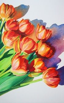 Sarah Bent | WATERCOLOR | Tulips Facing East