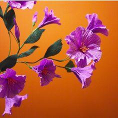 Beautiful crepe paper flowers by Papetal on Instagram #crepepaper #paperflowers