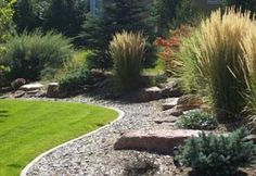 Low+Maintenance+Front+Yard+Landscaping | Converting your yard to a low-maintenance landscape is easy to do and ...