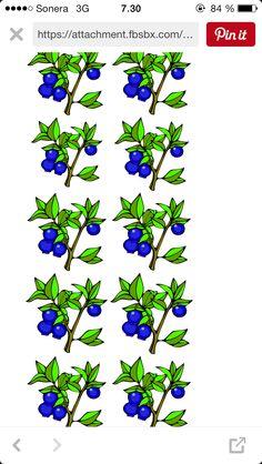 Ravintoketjuleikin kuvat Science Biology, First Grade, Geography, Sari, Classroom, Teaching, School, Plants, Saree