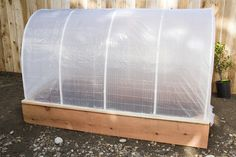 A covering for a raised bed makes this little greenhouse.
