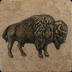 metallic buffalo tile | inset metal wildlife motifs decorative etched tile and stone