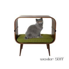 Modernist Cat Mid Century Modern Feline Furniture