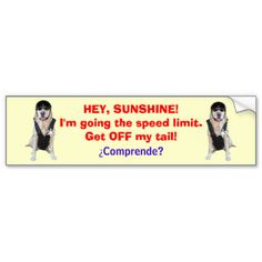 Shop Funny Dog/Lab Bumper Sticker for tailgators created by myrtieshuman.